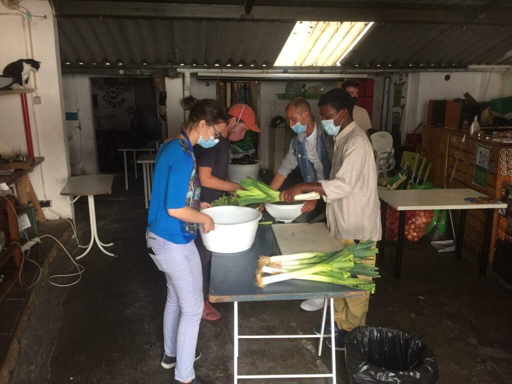 quatro pessoas no rda a preparar legumes à volta de uma mesa